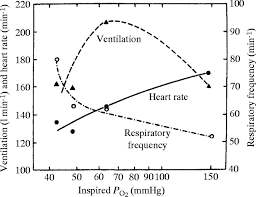 Limits Of Human Lung Function At High Altitude Journal Of