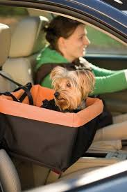 why should anyone car seats for dogs