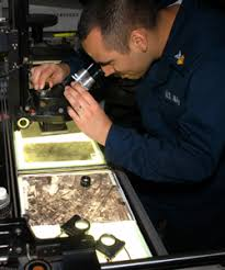 is intelligence specialist navy intelligence specialist