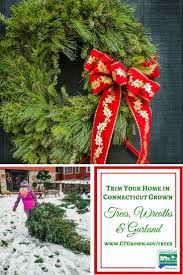 Where To Find A Christmas Tree Farm In The Wabash ValleyLocal Christmas Tree Lots