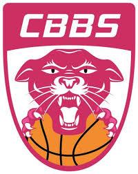 """Résultat de recherche d'images pour """"Charnay basket LF2 logo"""""""