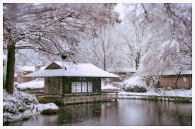 snow japanese garden fort worth texas snowfall winter storm tea house dsc 1291z by david kozlowski