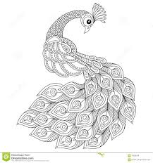 Small Picture Peacock Adult Antistress Coloring Page Stock Vector Image
