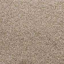 stainmaster exuberance iii seal indoor area rug common 8 x 10 actual