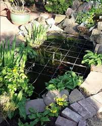 garden pond liners. The Image To Right Shows An Example Of A Small Garden Pond With Plants Interspersed Rocks Add Character Edge This Precious Liners