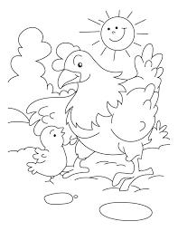 Chicken Coloring Sheet Koshigayainfo