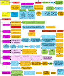 Ucc Article 2 Flow Chart Pampers Easy Ups Size Chart Corporations Law Flowchart 10b 5