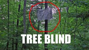 stop getting busted by deer my tree blind for my climbing stand you