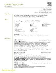 Html Resume Samples Resume Sample For Graphic Designer 37