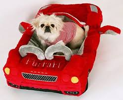 Luxury Ferrari and Taxi Pet Beds