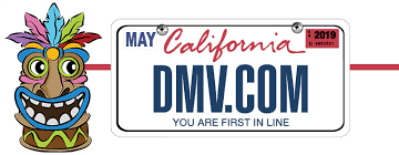 expiring driver licenses