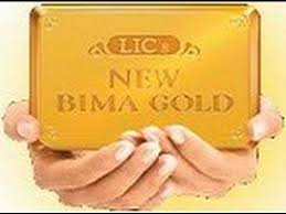 Lic New Bima Gold Policy Chart Lic New Bima Gold Policy Return Details Benefits Example