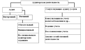 Курсовая работа Права и обязанности аудиторских организаций Общая классификация аудиторской деятельности в России