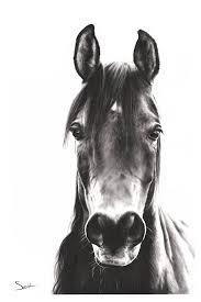 horse oil painting artist eric sweet
