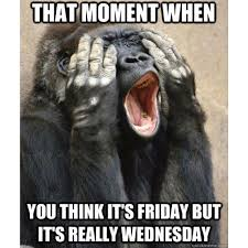 Funny Hump Day Quotes Delectable 48 Wednesday Memes Funny Hump Day Memes With Quotes 48