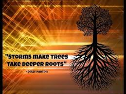 Tree Quotes Amazing Inspirational Tree Quotes For YOU YouTube