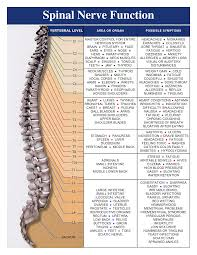 The Side Effects Of Chiropractic