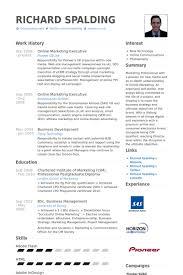 Online Marketing Executive Resume Samples Visualcv Resume Samples