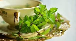 9 healing soothing benefits of mint tea