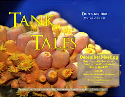 ACLC Tank Tales December 2018 by Aquarium Club of Lancaster ...
