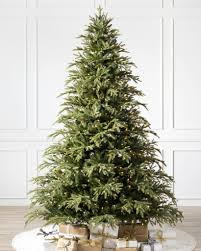 Brewer Spruce Tree-1