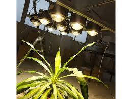 Grow Light Duo Shine Grow 450w Vero29 Cob Kits Gen 7
