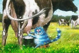 Картинки по запросу корова и кот картинка
