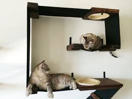 wall mounted furniture gives cats a safe place to run when they start to feel threatened while still allowing them to be part of the social action of the cat safe furniture