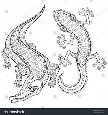 Small Picture Coloring Pages Animals Green Anole Coloring Page Lizard