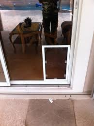 white tall large pet door installed in large single pane sliding glass door