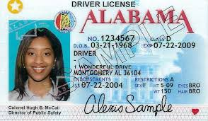 Times - Backlash Law Facing States Washington From To Real Refusing Id Comply