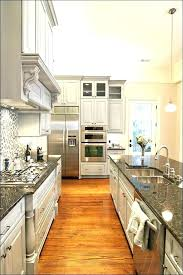 most popular kitchen cabinets cabinet styles glley pint populr