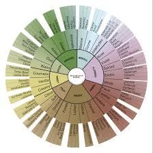 Fragrance Classification Beauty Junkie Fragrance 101