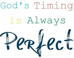Gods Timing Quotes Cool Gods Timing Quotes Feat Me Google For Produce Perfect Trust In Gods