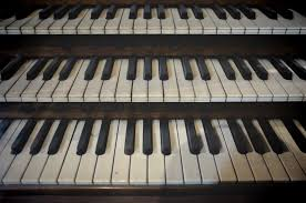 Image result for organ