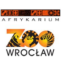 Znalezione obrazy dla zapytania afrykarium