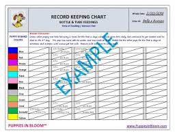 Record Keeping Charts For Breeders _whelping Details_ Feeding Times_ Weight Gain_vaccinations_microchip_new Owner Info_puppy Id Bands