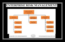 Enterprise Risk Management Organizational Chart