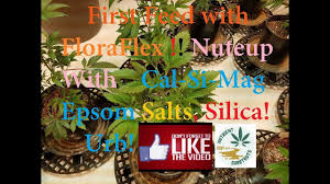 Floraflex Nutrients Feed Chart Floraflex 1st Time Walk Step By Step Youtube