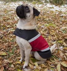 Ultra Paws Reflective Red Dog Jacket Water Resistant All