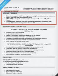 Resume Profile Classy Resume Profile Examples Writing Guide Resume Companion