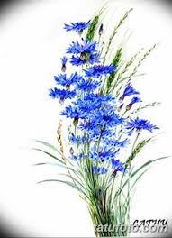 эскиз для тату цветок василек 31052019 080 Sketch Tattoo