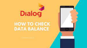 check data balance in dialog router