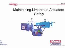 limitorque wiring diagram l120 magtix flowserve limitorque actuators general safety precautions and wiring diagram l120 basic pictures on wiring diagram