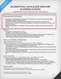 Example Of Resume Profile Resume Sample