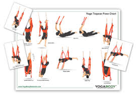 Quick Pose Reference Guide For Yoga Trapeze Practice This