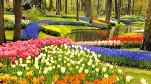 Resultado de imagem para jardins celestiais