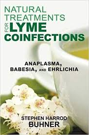 Natural Treatments For Lyme Coinfections Anaplasma Babesia