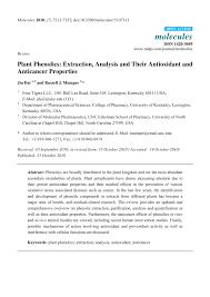 argumentative essay about euthanasia university