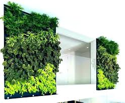 indoor wall garden hydroponic herb wallpaper